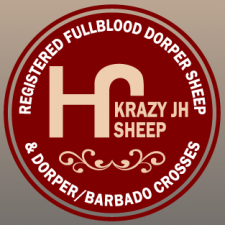 KrazyJHSheep.com - logo and website